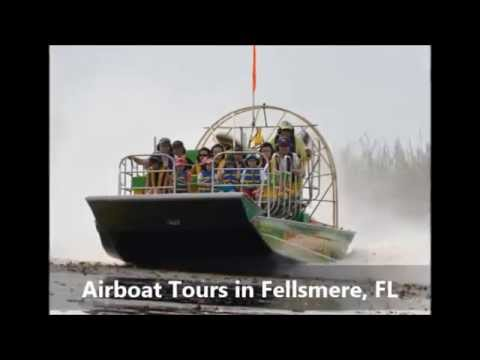 airboat tours vero beach