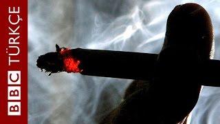 Ciğerleri sağlıklı kalan sigara tiryakilerinin sırrı - BBC Türkçe