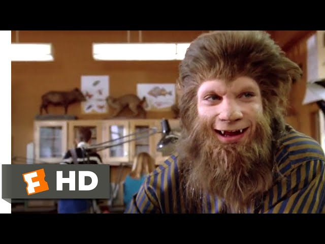 Teen Wolf Too (1987) - Frog Fight! Scene (8/12)   Movieclips