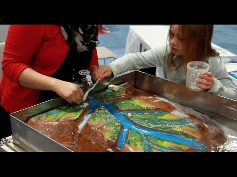 Restoring the Mississippi River Delta - USA Science and Engineering Fest