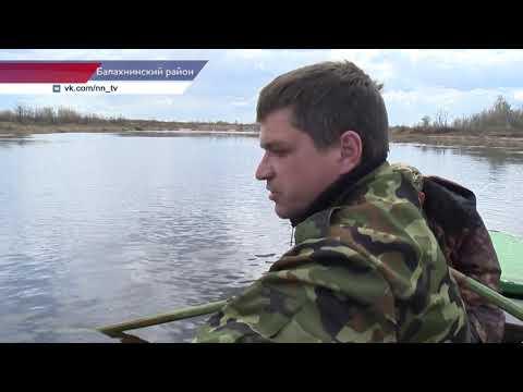 видео: Инспекторы рыбоохраны вышли в рейд по Волге