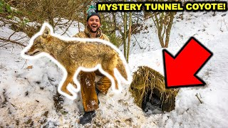 TRAPPING the PREDATOR at the MYSTERY TUNNEL in My BACKYARD!!!