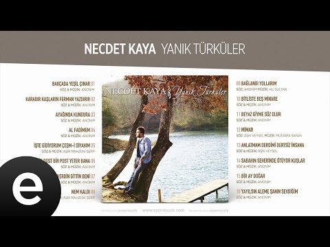 İşte Gidiyorum Çeşmi Siyahım  (Necdet Kaya) Official Audio #iştegidiyorum #necdetkaya