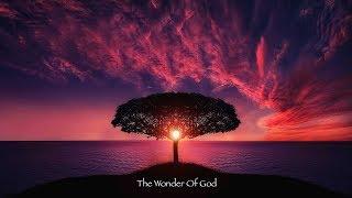 Wonder Of God - Buddy Fanjoy