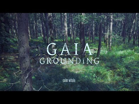Grounding to Mother Gaia ? Shaman Drum Journey, Gong & Nature ROOT Chakra Meditation Music