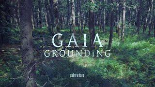 Grounding to Mother Gaia 🌍 Shaman Drum Journey, Gong & Nature ROOT Chakra Meditation Music