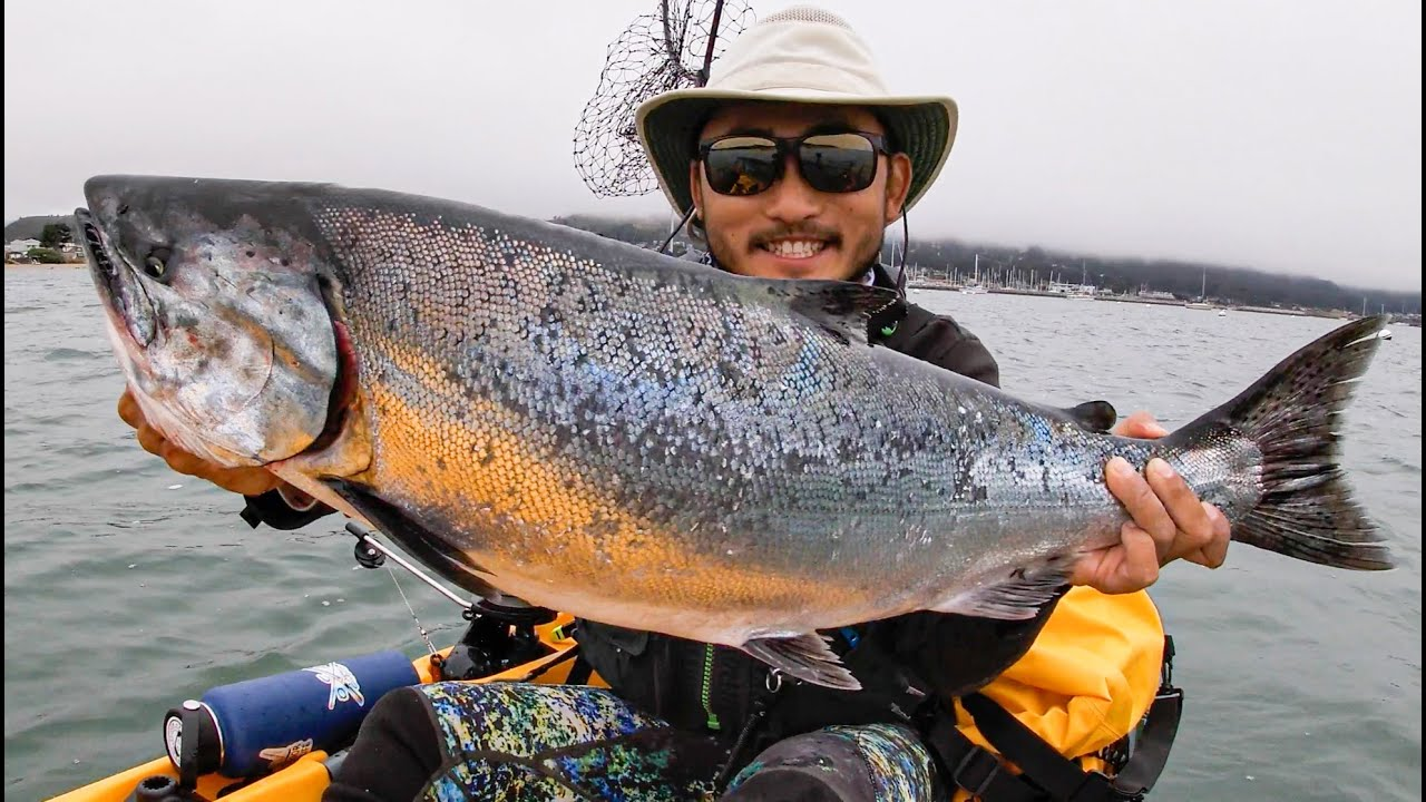 The CHASE FOR WILD SALMON ON KAYAK | Catch And Cook King Salmon | Part 1