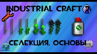 Minecraft: Industrial Craft 2: селекция, основы