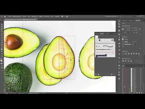 Как нарисовать реалистичное авокадо в векторе инструментом Gradient Mesh