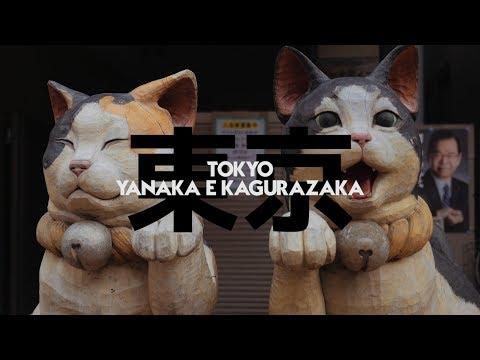 TOKYO: YANAKA E KAGURAZAKA - GIAPPONE 2016 Ep 50 di 60