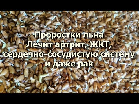 Сонник Семена приснились, к чему снятся Семена во сне видеть?
