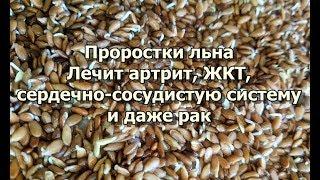 видео Применение семян льна в народной медицине