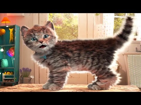 Lindo Gatito Aventuras  Dibujos Animados Infantiles  Episodio 4
