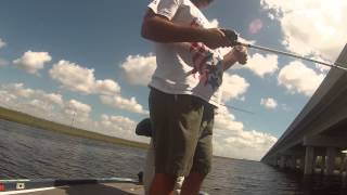 Tamiami Trail Bass Fishing with Brett