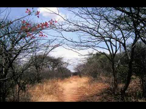 Tanzania Music and Images thumbnail