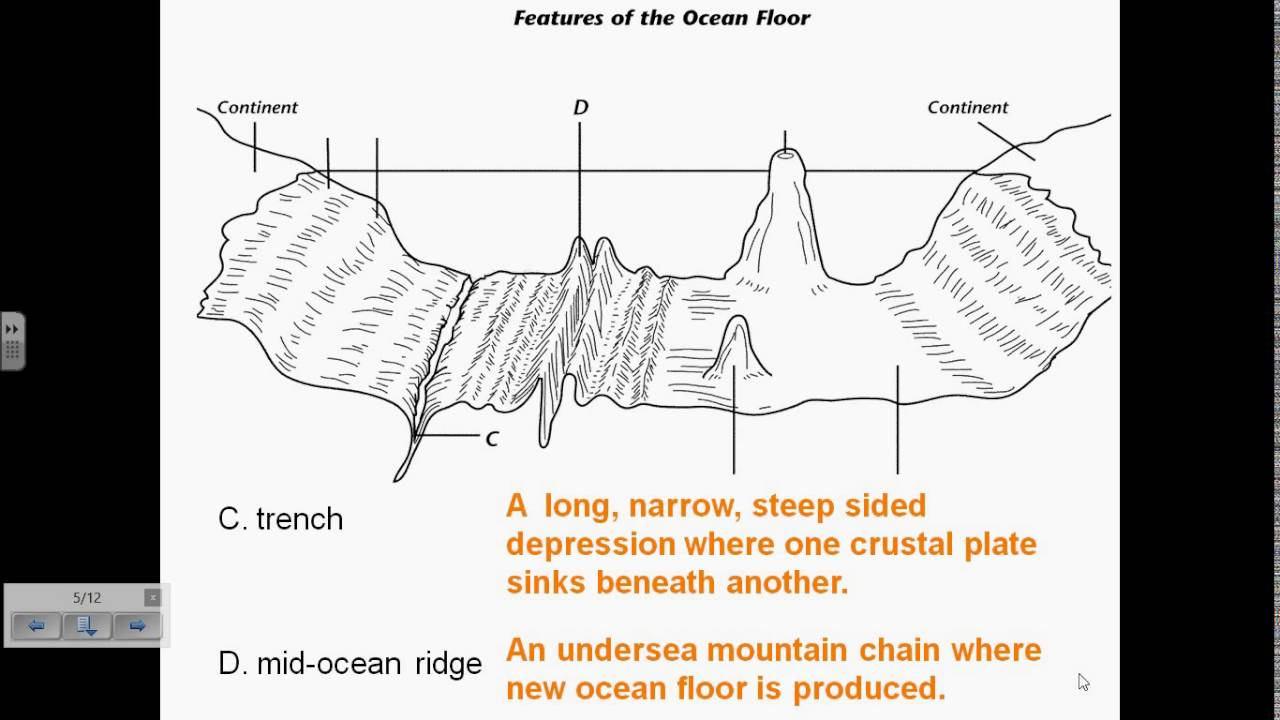 Subsurface Of The Ocean Floor  Topography