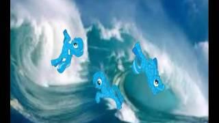 Пони клип Все дельфины в ураган