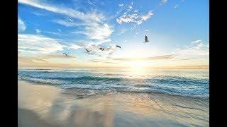 あたらしい朝を、希望を胸に、みんながすがすがしい気持ちで迎えられま...