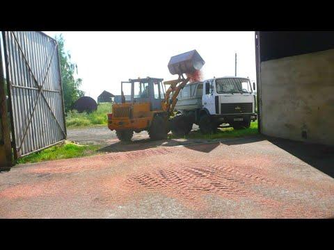 106-Д.Перевоз пшеницы на МАЗе,погрузчик ТО-30.Лехин ремонт ОВС-25