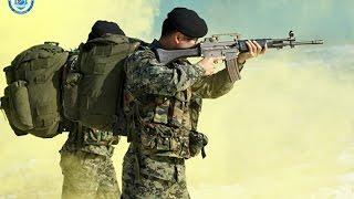 대한민국의 자존심이라 불리우는 K2 소총의 흥미로운 사실