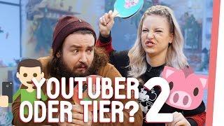YouTuber oder Tier 2! QUIZ mit Kelly und Sturmwaffel | GMI