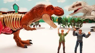 Dinosaur Battle Video - T-Rex VS Indominus VS Pteranodon. Dinosaur Anatomy Set