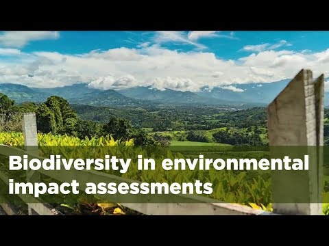 Biodiversity in social and environmental impact assessments