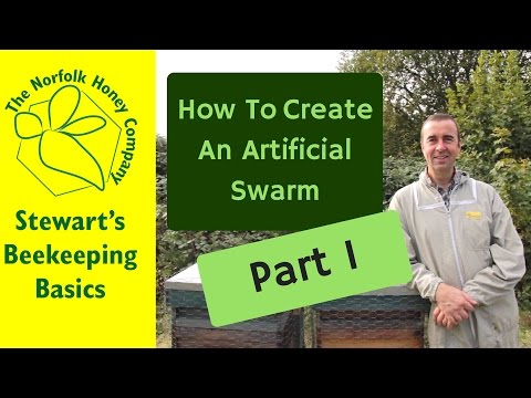 Beekeeping Basics - How to create an Artificial Swarm Part 1 2016