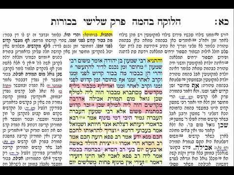 בכורות כא 21 רביעי ג אייר תשע״ט דף יומי בכורות דף כא שמואל נבון ירושלים Daf yomi Bechoros Bechorot