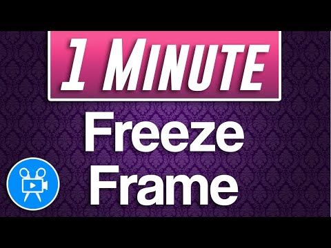 How to Freeze Frame Tutorial | Movavi Video Editor Plus thumbnail