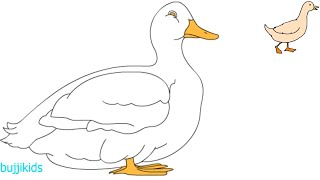 How to Draw a Duck for Kids | Easy Duck Drawing | Drawing Lessons for Kids