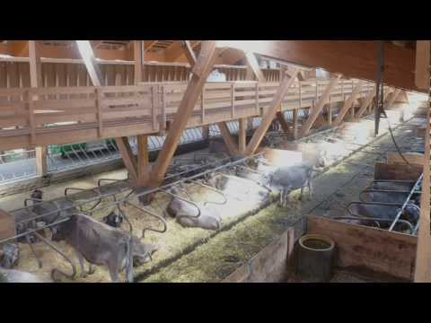 Farm Connections 412: Alpine Farming