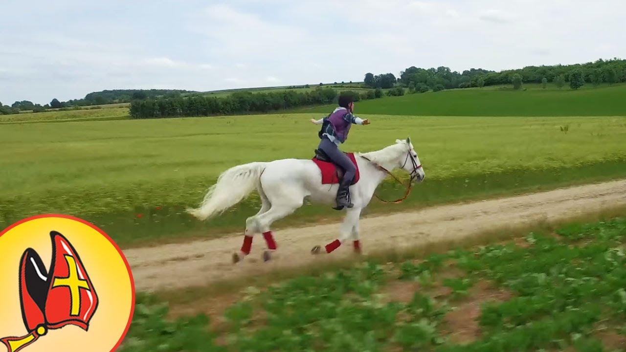 Paarden Hoefijzers Kleurplaten.Filmfragment Bloem Rijdt Op Amerigo Het Paard Verliest Zijn