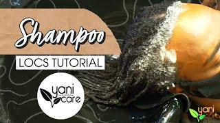 Shampoo by Yani Care Studio