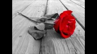 Tony El Osta-ya 3achikata l wardi -يا عاشقة الورد