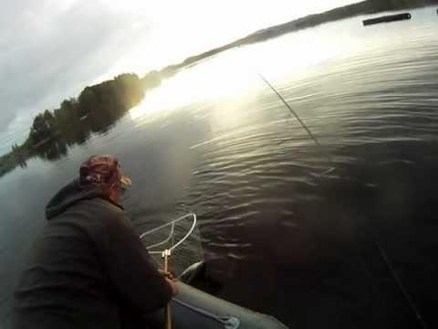 отчет о рыбалке на озере сиг летом