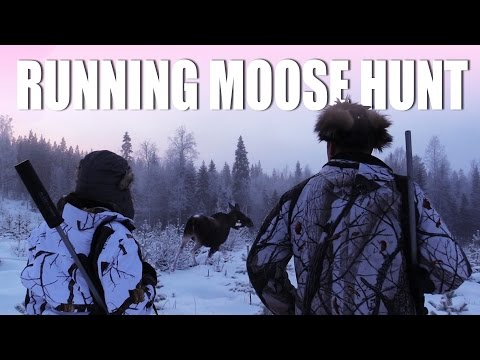 Running Moose Hunt