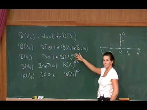 Anne Schilling (Univ. of California Davis) / Affine crystals for type E / 2009-09-23