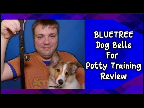 bluetree-dog-bells-for-potty-training-review---mumblesvideos