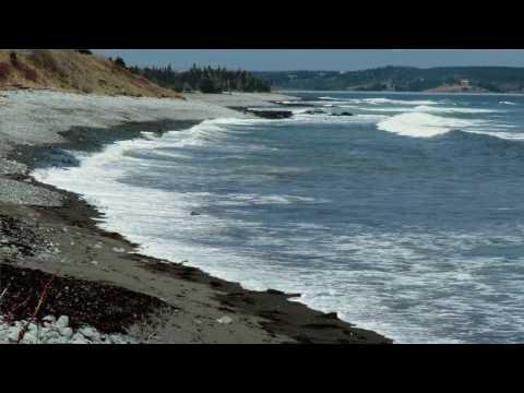 Cowbay Surf Nova Scotia