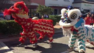 Lunar new year show 2018 grand opening