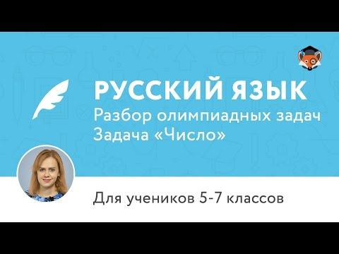 Видео Олимпиада по русскому языку 3 класс