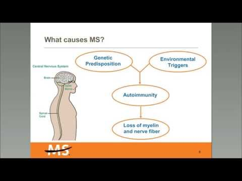 Experience Ability: Multiple Sclerosis (MS) Awareness from the National MS Society