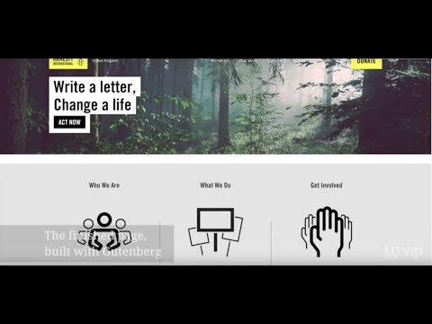 Gutenberg Showcase: Custom WordPress Blocks for Amnesty International, by Big Bite