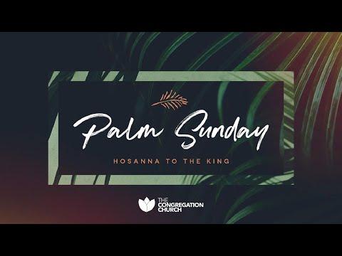 Dr. Tim Storey // Palm Sunday