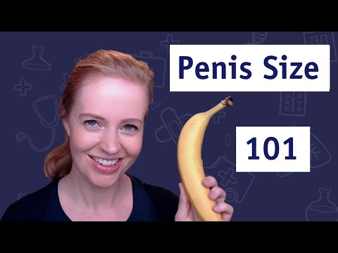 Normal Range For Penis Size 🍌