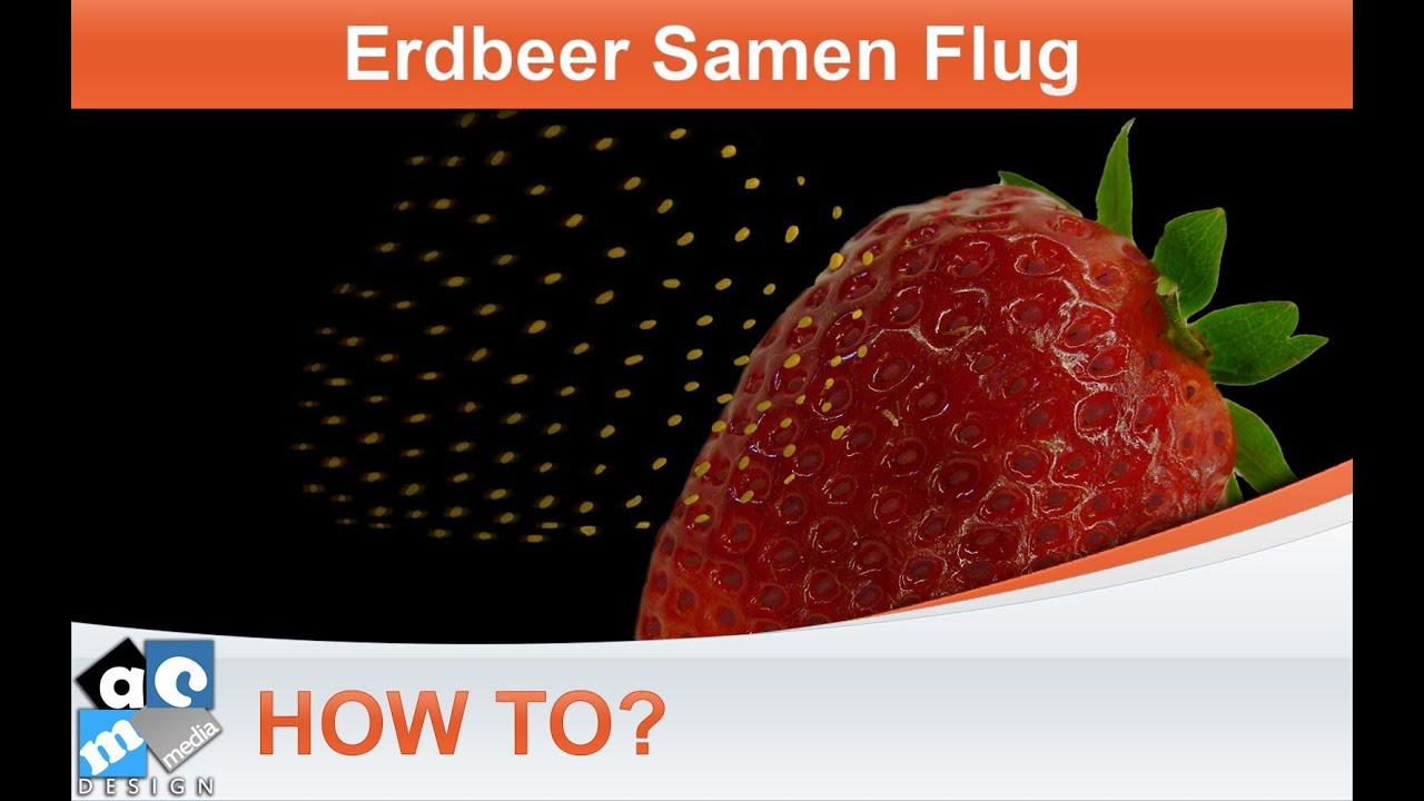 Etwas Neues genug How To? - Samen aus der Erdbeere fliegen lassen - (Tutorial @OF_05