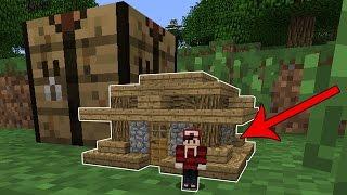 Minecraft - VIREI UMA FORMIGA ‹ PEQUENINOS › #01 (NOVA SÉRIE)