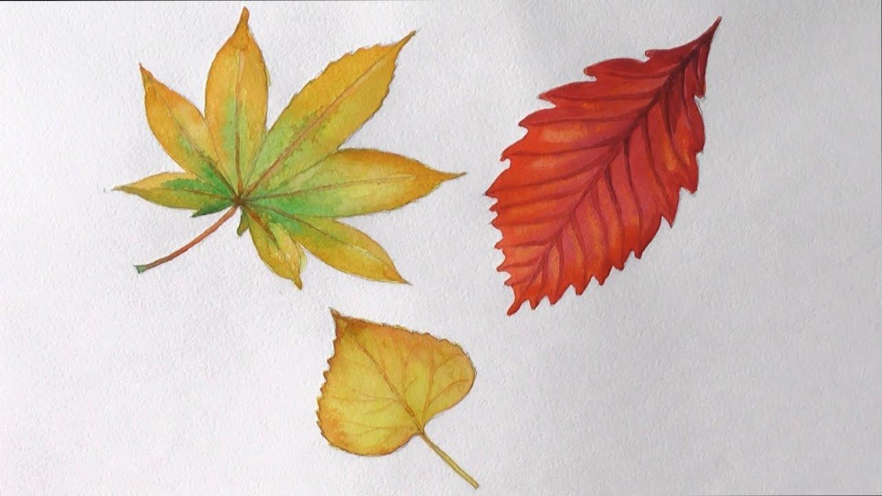 Как нарисовать осенний натюрморт картинки