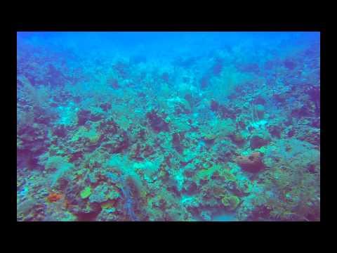 Anchor Damage Filmed 2014 09 02